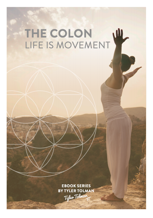 Life Is Movement eBook - Healthyselfstore.com