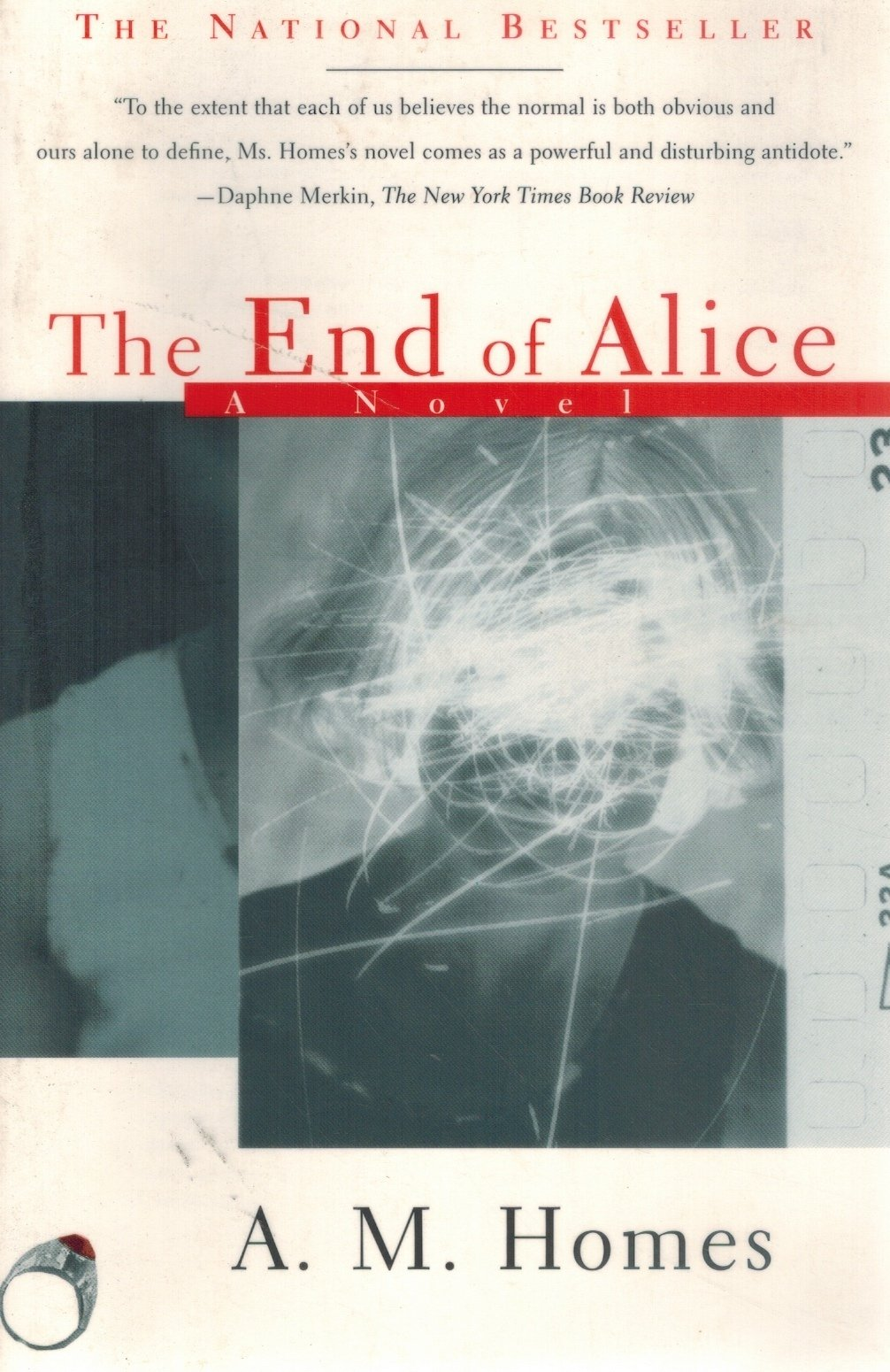 The End Of Alice  by Homes, A. M.