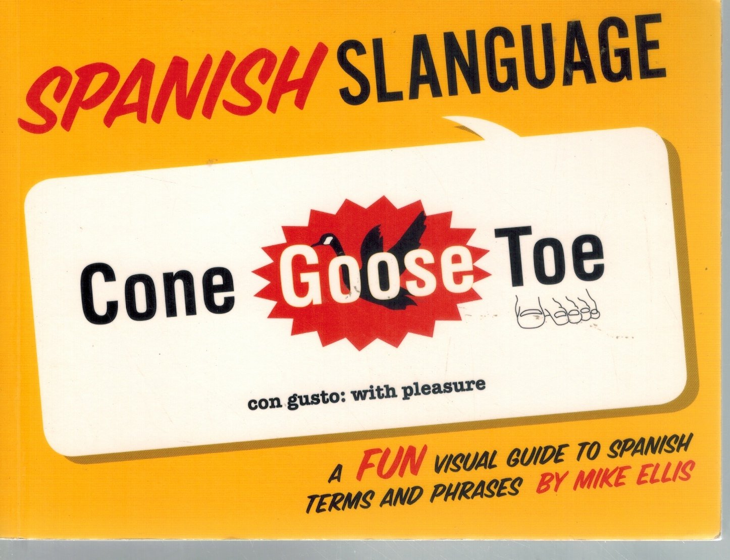SPANISH SLANGUAGE  A Fun Visual Guide to Spanish Terms and Phrases