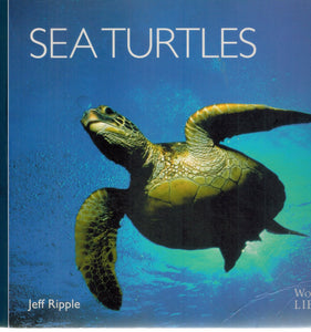 Sea Turtles of the World  by Ripple, Jeff