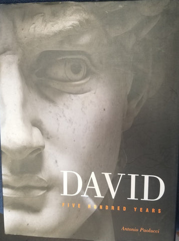 DAVID Five Hundred Years  by Bucci, Cristina & Chiara Lachi & Antonio Paolucci