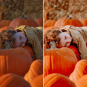 twigyposts,JBC Autumn Presets | Mobile,Jana Bishop Collection,