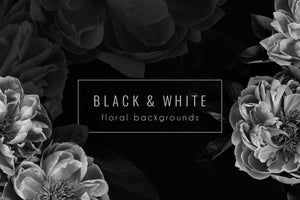 Floral Background PNG Stock Photos