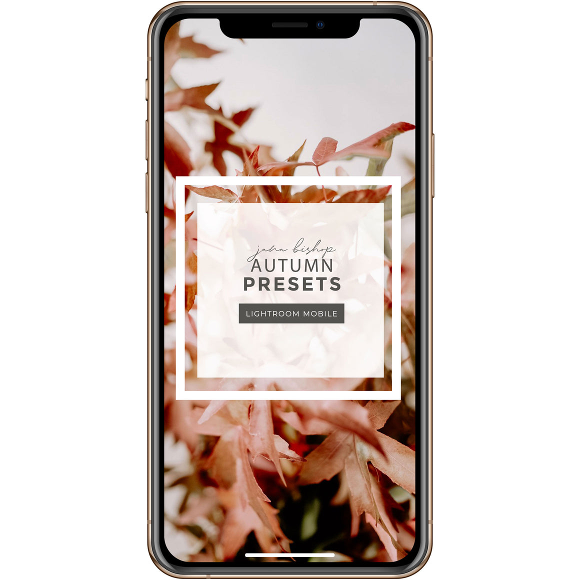 JBC Autumn Presets | Mobile