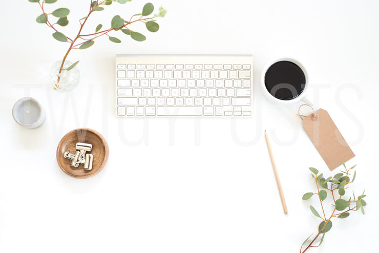 twigyposts,Neutral Desk Scene | Individual Photos,Jana Bishop Collection,Individual Stock Photos