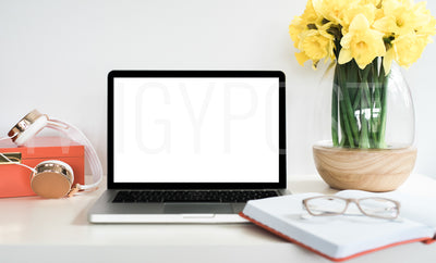 twigyposts,Colorful Laptop Mockup | Individual Photos,TwigyPosts,Individual Stock Photos
