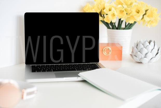 twigyposts,Colorful Desk with Lap Top | Individual Photos,TwigyPosts,Individual Stock Photos