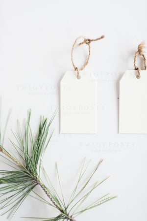 Christmas Mockups | Gift Tags, Cards & Envelopes