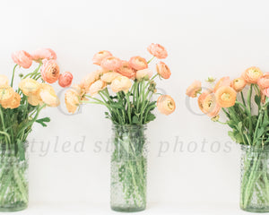 Spring Styled Stock Photos