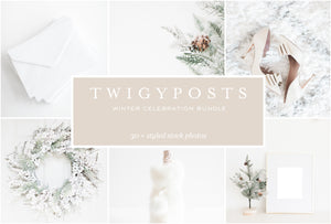 twigyposts,Winter Celebration Stock Photos,TwigyPosts,Photo Bundles