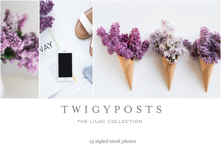 twigyposts,Spring Lilac Stock Photos,TwigyPosts,Photo Bundles