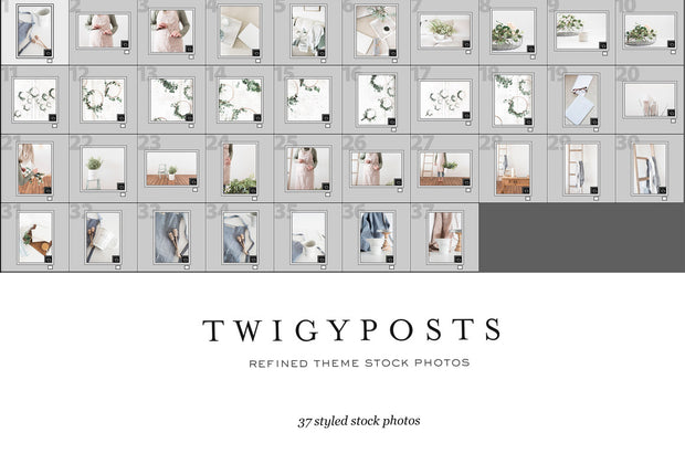twigyposts,Refined | Stock Photos for Wordpress Themes,TwigyPosts,Photo Bundles