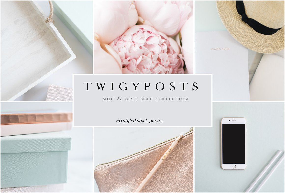 Mint & Rose Gold Stock Photos