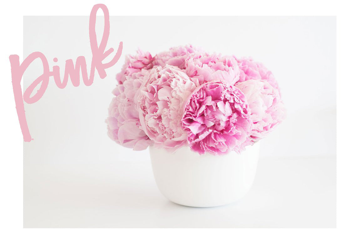 Pink Peony Stock Photo Bundle