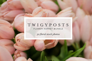 Flower Market Bundle | Assorted Floral Images