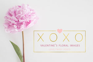 Valentines Stock Photo Bundle | Pink Peonies