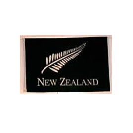 New Zealand Fern Flag - Small Black 80046