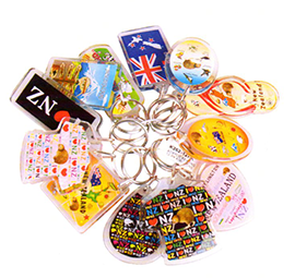 Set of 12 Assorted Kiwi Icon Key Rings - K262-12PK