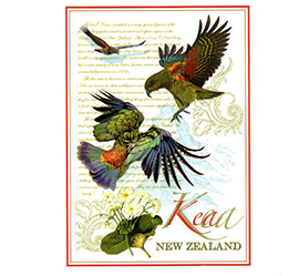 Kea NZ Designer Tea Towel - 65183