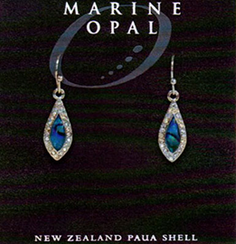 Paua Earrings - MOE127