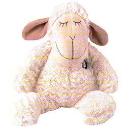 Sleeping NZ Sheep - TS4336