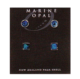 Paua Earrings - MOE93