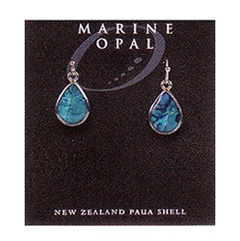 Paua Earrings - MOE61