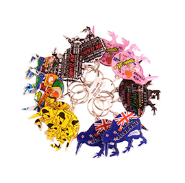Set of 12 Assorted Kiwi Key Rings - K269-12PK