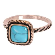 iXXXi invulring Summer Turquoise R05920 Goud, Zilver of Rosé (2MM)