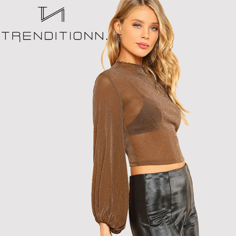 products/Brown_See_Though_Top_Shirt_With_Sparkle3.jpg