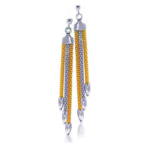 Silver and Gold Tassel Earrings