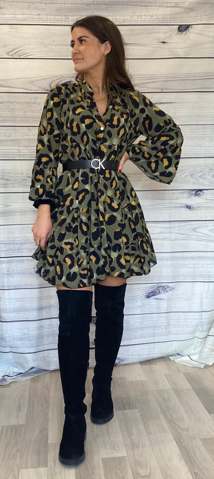 Cara Leopard Print Dress