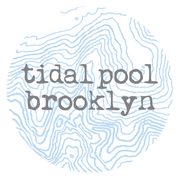Tidal Pool Brooklyn