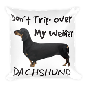 Weiner Dog Square Pillow