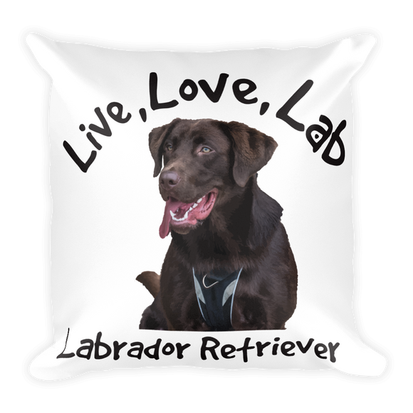Live Love Lab Square Pillow