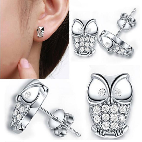 Silver Owl Stud Earrings with Cubic Zircon for Owl Lovers