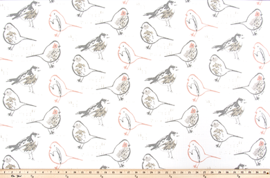 picture of small birds printed on white fabric