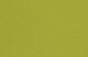 Outdoor Fabric - Dyed Greenery Luxe Polyester Fabric By Premier Prints