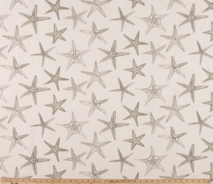 Photo of Light Grey Starfish Fabric