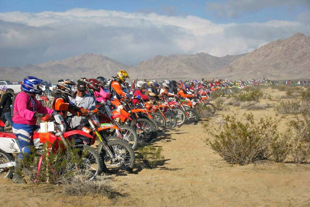 crazy large amount of dirt bikers readying at the start of a hare and hound race