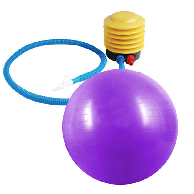 Yoga Ball 65cm Exercise Gymnastic Fitness Pilates Balance With Air Pump free shipping - Gisselle Morales
