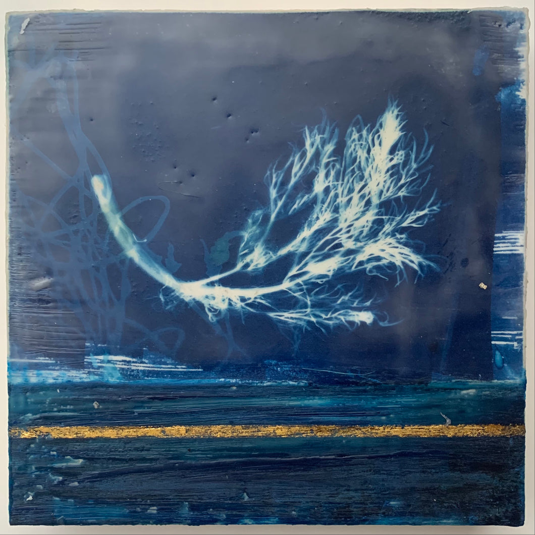 Float (Cyanotype Series)