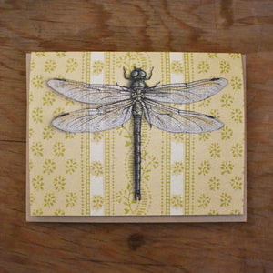 *Notecard - Dragonfly