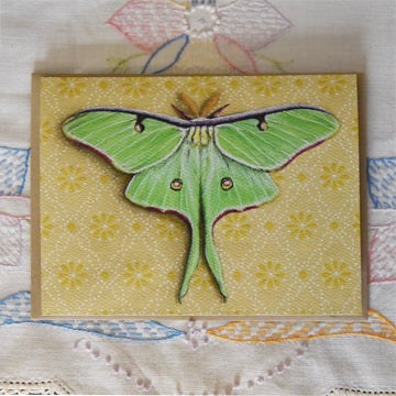 *Notecard - Luna Moth