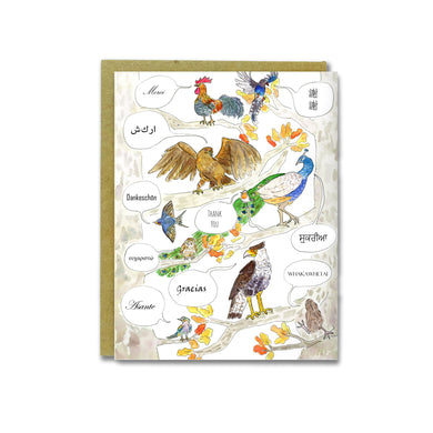 World Birds Card