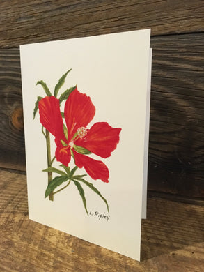 Scarlet Mallow Watercolor Card