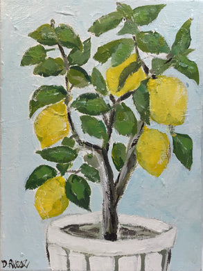 Lemon Tree in a Basket