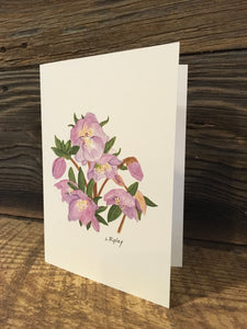 Lenten Rose (Hellebore) Watercolor Card