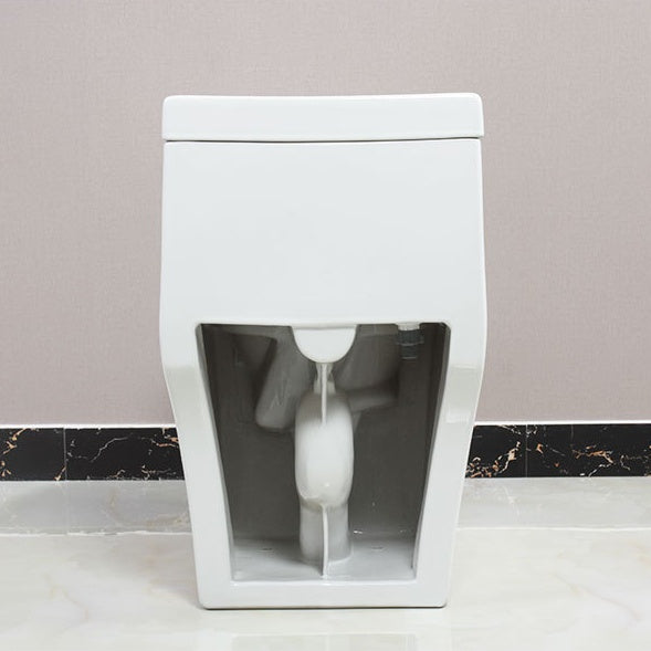 One piece dual flush toilet completed with soft close and removable seat 113