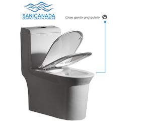 One piece dual flush toilet 930